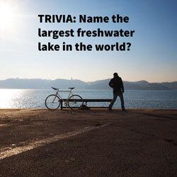 Interactive Content Trivia